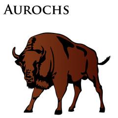 brown aurochs illustration