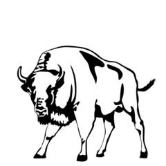 black and white aurochs illustration