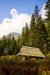 Roztoka Valley,Tatra Mountains, Poland