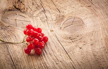 Red viburnum berries on wooden table