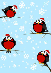 Cute little birds on winter background
