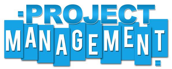 Project Managemetn Blue Stripes