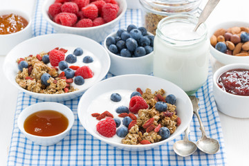 breakfast with granola, berries, honey and yogurt, horizontal