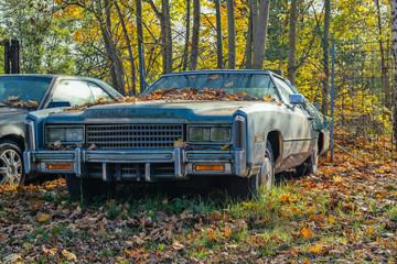 Eldorado Coupe, Oldtimer