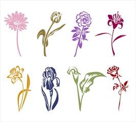 Восемь силуэтов цветов.