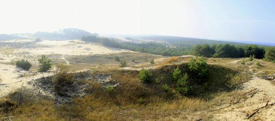 панорама песков на Куршской косе