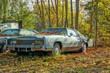 Постер, плакат: US Oldtimer Eldorado Coupe