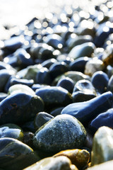 Composition of multicolored sea pebbles background