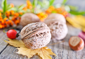 hawthorn and walnuts