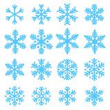 Various snowflakes poster