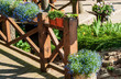 Summer garden and terrace with flowers