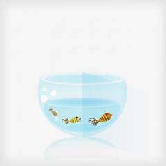 Small fishes aquarian.