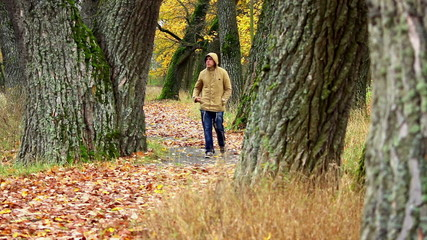 Man walking at autumnal park on yellow leaves
