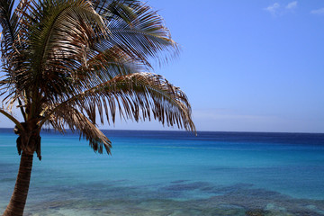 Atlantic Ocean near Canary Islands