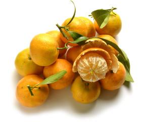 Citrus × clementina Clementine Клементин קלמנטינה