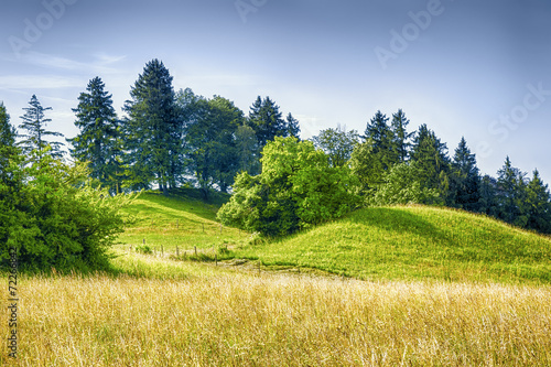 canvas print picture meadow and hills