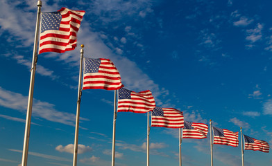 Row American Flags, Washington DC,USA