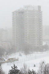 Snowstorm in the city