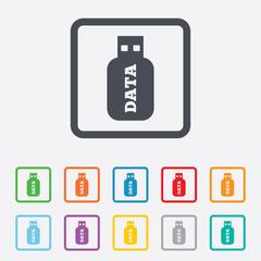 Usb Stick sign icon. Usb flash drive button.