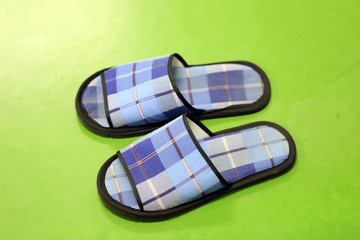 The blue slippers.