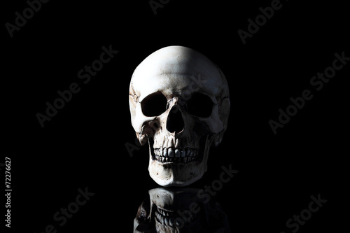 Fotobehang Begraafplaats Realistic model of a human skull with teeth