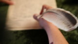 woman writes a letter to feather 1 poster