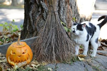 Pumpkin and broom for holiday Halloween