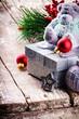 Christmas decorations with teddy bear