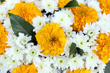 Yellow and white flowers.