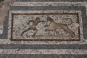 Old roman mosaic floor in Kos city; Greece