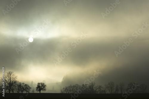 canvas print picture Nebel Landschaft mit Bäumen und Sonne im Hintergrund