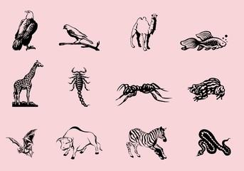 Planche animaux noir et blanc Stickers tatouages1