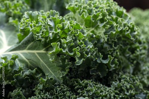 Foto op Aluminium Groenten A healthy fresh curly kale