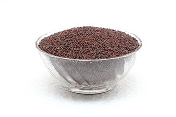 black mustard seeds isolated on white background