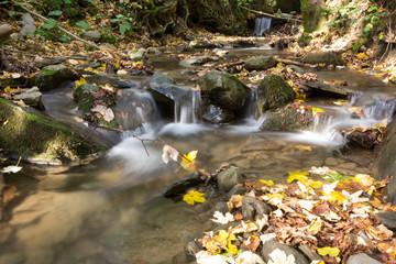 Autunno nel Parco Nazionale delle Foreste Casentinesi