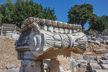 capitals Ionic column