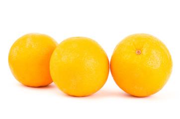 Navel orange fruit