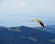 Gleitschirmflieger über dem Bodensee - 72304034