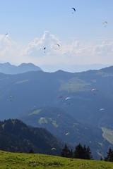 Gleitschirmflieger vor Alpenkulisse