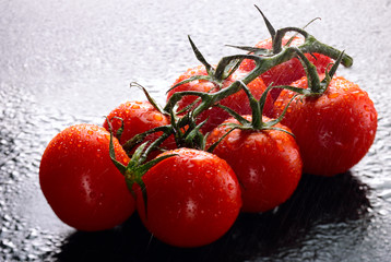 Vine tomatoes on wet slate background