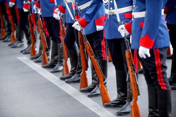 Bayonet rifle detail during military parade