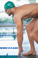 Fit swimmer about to dive into the pool