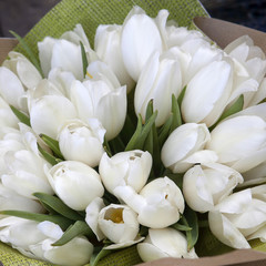 bunch of white flowers for bride