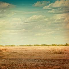 Autumn wheat field lomography.