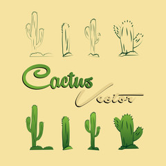 Four Cactus