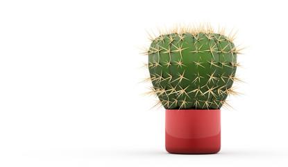 Cactus rendered