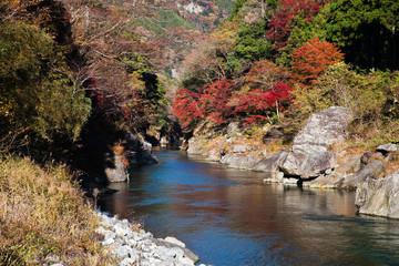 渓谷に流れる多摩川