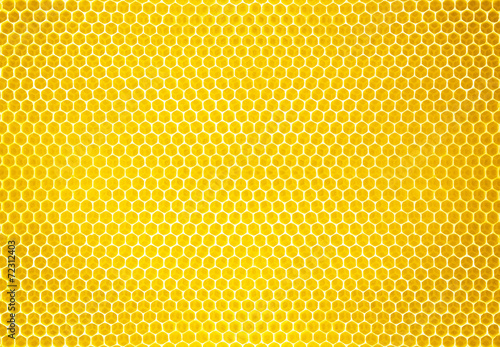 Leinwandbild Motiv natural honey comb background or texture