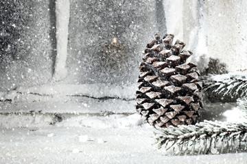 cine on snow