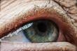 old eye - detail
